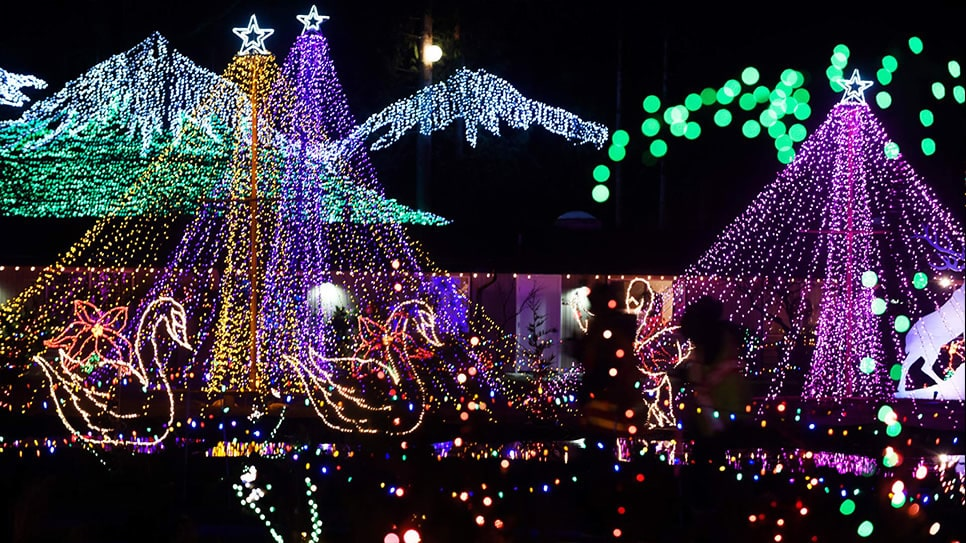 A spectacular array of Christmas Lights at night.